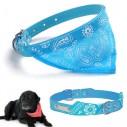Collar con Pañoleta para Mascotas Grandes correa bandana perro