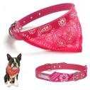 Collar con Pañoleta para Mascotas Medianas correa bandana perro