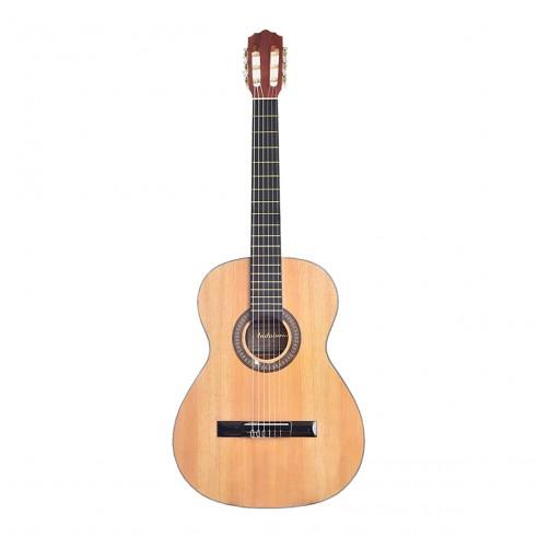 Guitarra Acústica de Estudio Premiun Redonda en Pino Ciprés